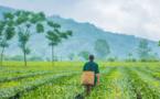 Protection de l'environnement : changer nos modes de vie, repenser notre relation à la nature