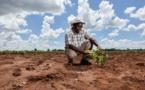 Le changement climatique s'accélère