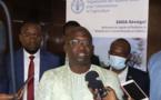 Validation de la stratégie de mise en œuvre de la Cdn : La Fao réitère son engagement à soutenir le Sénégal