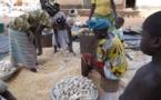 Finance islamique :  Un levier pour la création de micro-entreprises