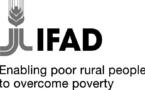 Afrique: L'agriculture familiale et l'agro-industrie, clés pour la réduction de la pauvreté
