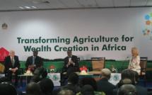 FINANCEMENT DE L'AGRICULTURE :  Les banques commerciales manquent toujours à l'appel selon Macky Sall